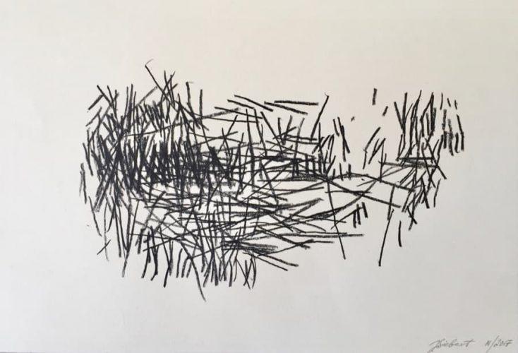 34x50cm, Lith. Cryon auf Papier